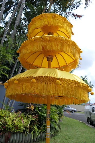 tropical tropicalesque garden design landscaping renehundscheidt sunnybankhills brisbane queensland tamanair balinesestylegarden tanetahi