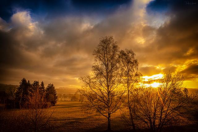 sunrise Waldnaabauen