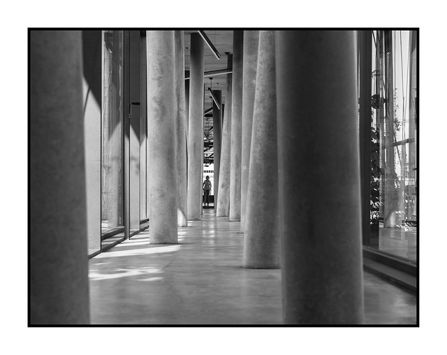 along the leaning columns