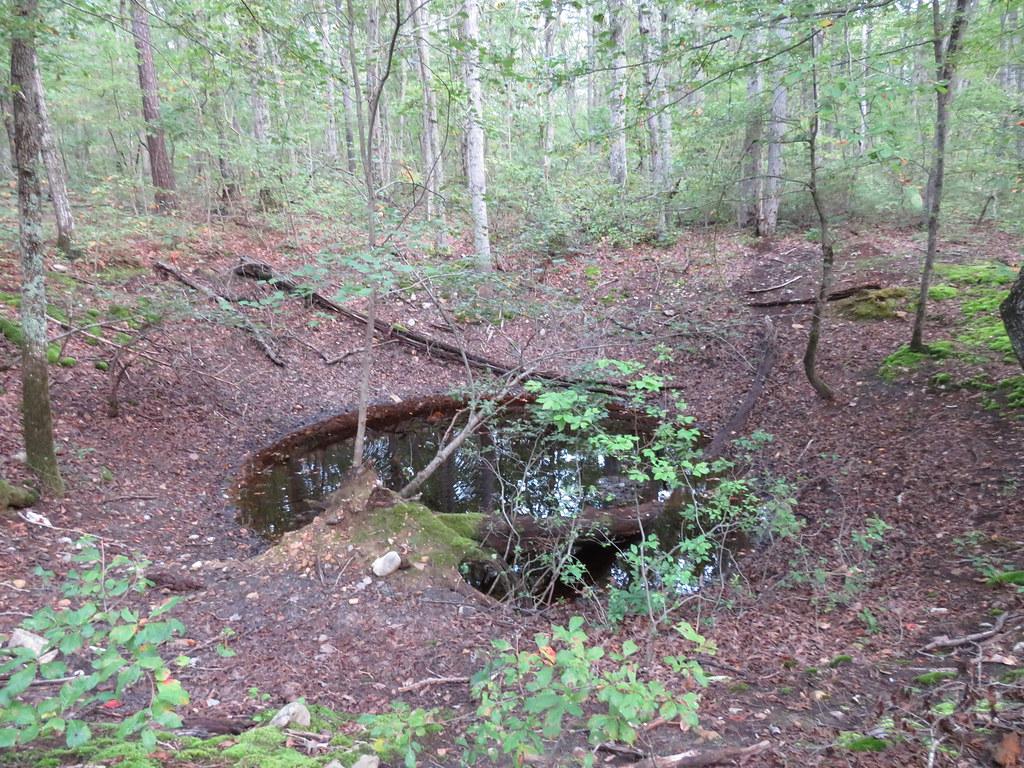 tiny sinkhole