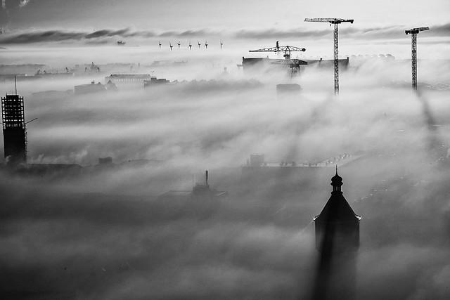 Mistiy morning.....