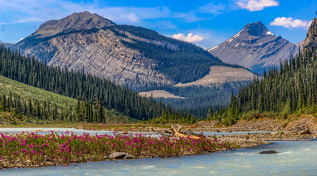 Icefields Parkway - July 2017