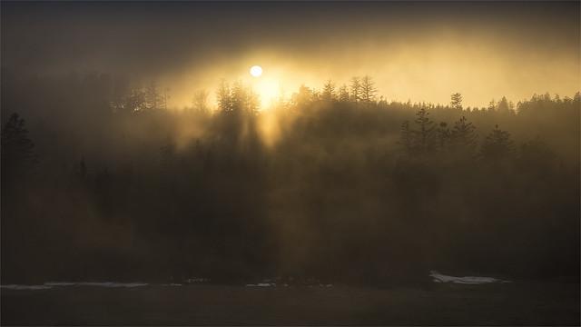 _DSC31447 Sunset across the foggy forest