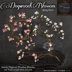 HEXtraordinary - Dogwood Blossoms - Wanderlust Weekend, 50L