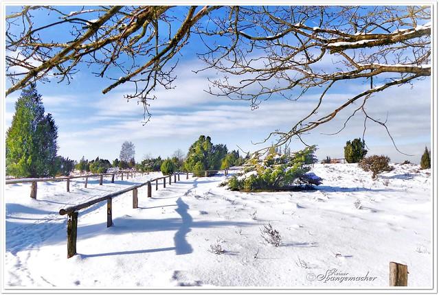 Wilseder Berg im Schnee