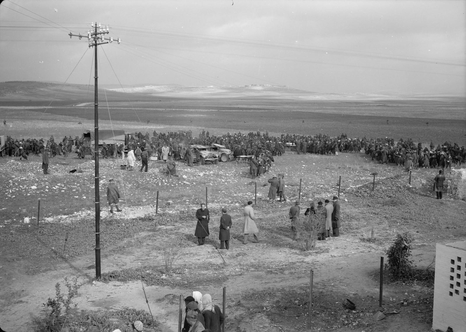 20. Панорама раздачи пищи итальянским пленным на станции Вади Сарар