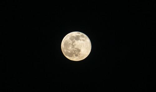 Huge yellow moon