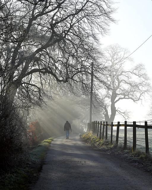 Misty Morning Exercise