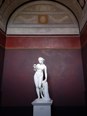 Thorvaldsen designed the entire 'look' of the museum in order to highlight his neo-classical sculptures - this one of the goddess Venus with an apple