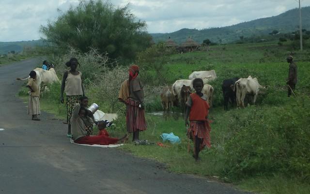 Rural Group