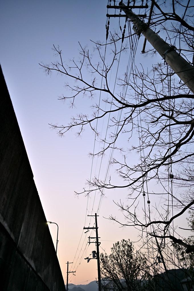 NZ6_1103