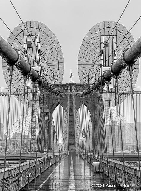 Brooklyn Bridge- 2nd Dose Moderna-4969