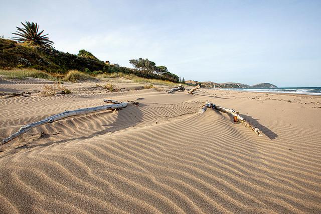 Summer Evening Sand Dunes