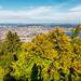 Zurich and Lake Zurich