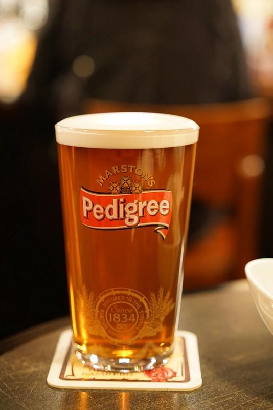Cooper Ale's_pedigree