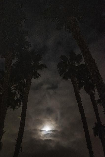Moonshinin'