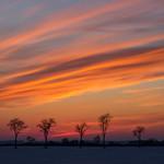 27. Veebruar 2021 - 17:47 - Sunset