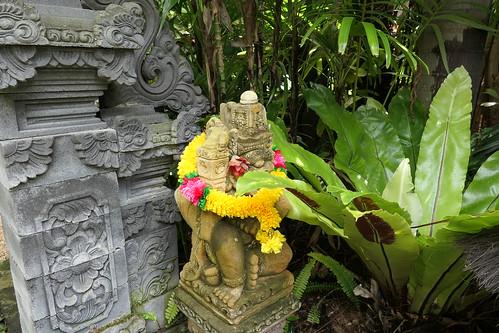 tamanaïr sunnybankhills 2021 tropicallandscaping balinesestylegarden brisbane renehundscheidt opengarden tropicalplants tropicalgarden tanetahi