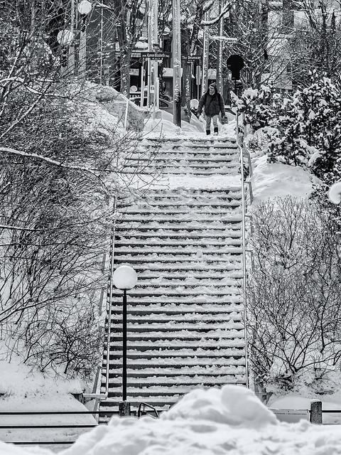 Winterscape 2021 # 93 ... (c)rebfoto