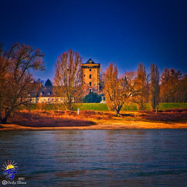Rheinufersäuberung BAB  Feb-21 527 B2
