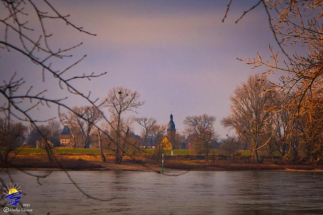 Rheinufersäuberung BAB  Feb-21 500