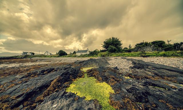 Green goo at Broadford Bay, Skye, Scotland.