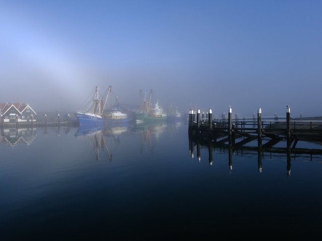 Early Morning Harbour