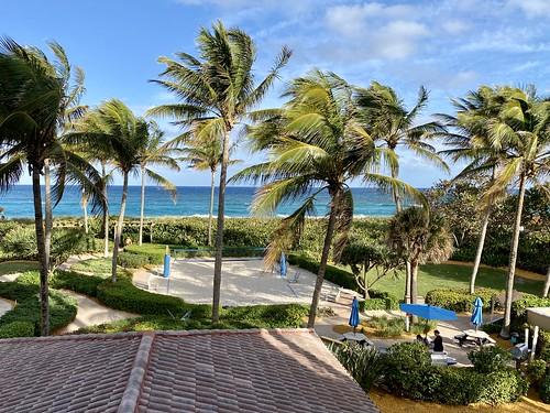 palmbeachshores florida 2021 ocean palms lines
