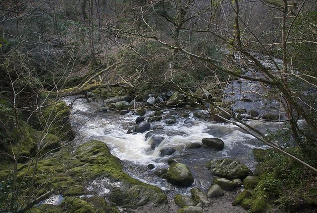 25022102 Glencullen River