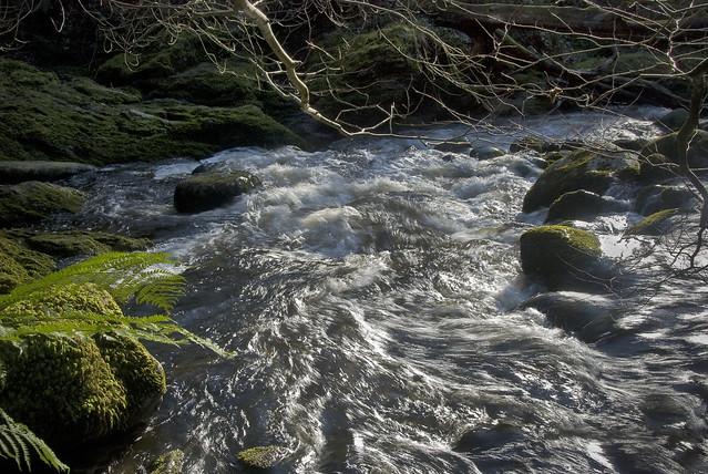 25022101 Glencullen River