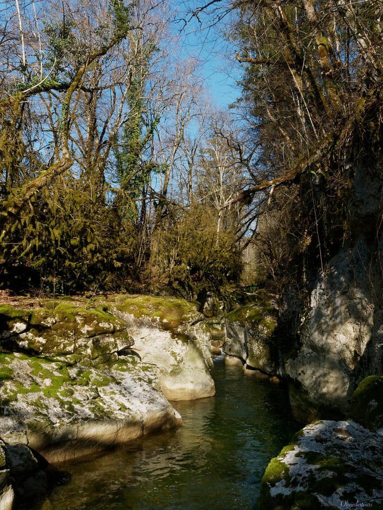 Le Séran et la cascade de Cerveyrieu 50989261878_2451d7224f_b
