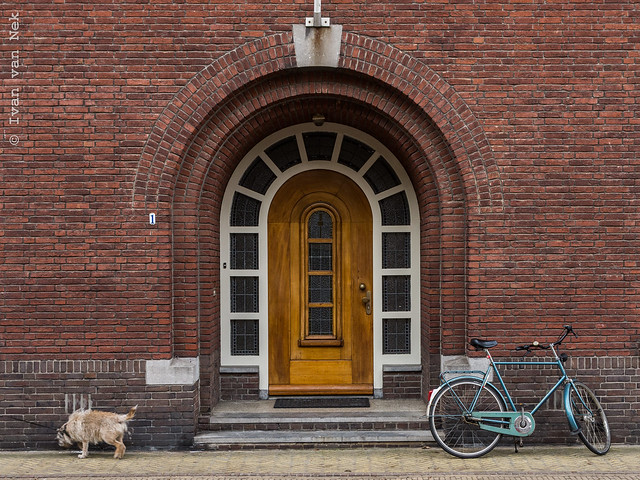 Composition with dog, door and bicycle