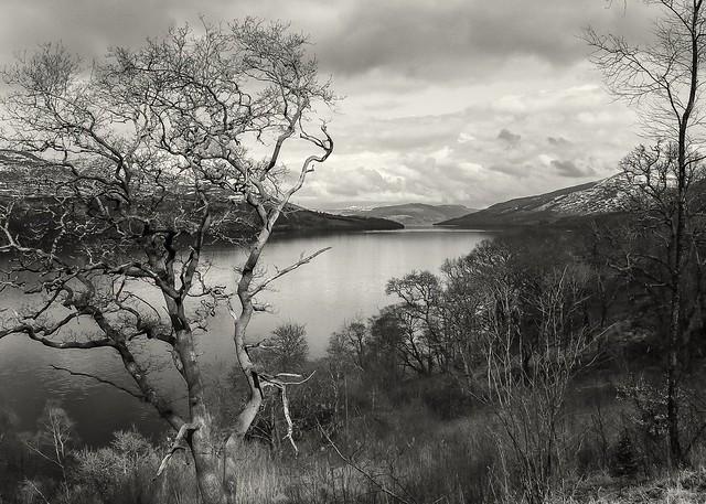 Wild lochscape
