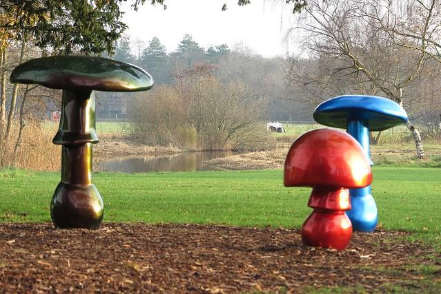 [mushrooms]