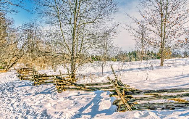Mid-winter sunshine