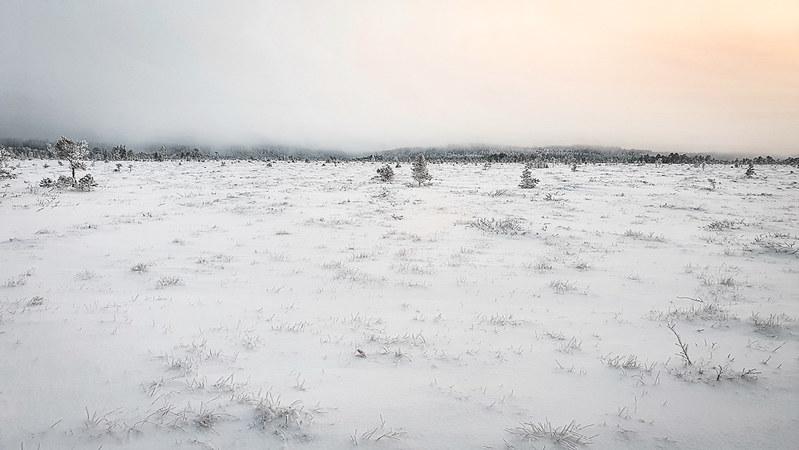 Torronsuon kansallispuisto, Etelä-Suomen talviretkeilyreitit