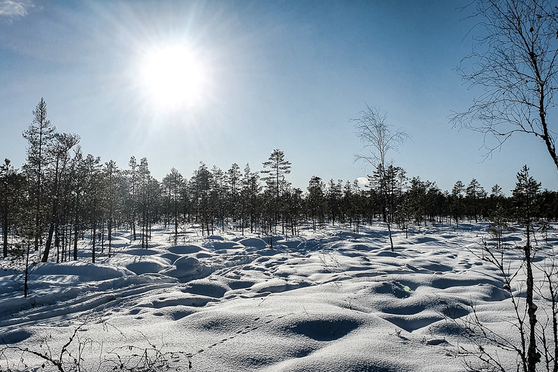 Kurjenrahkan kansallispuisto, Etelä-Suomen talviretkeilyreitit