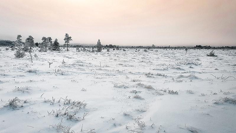 Torronsuon kansallispuisto talvella, Etelä-Suomen retkeilyreitit