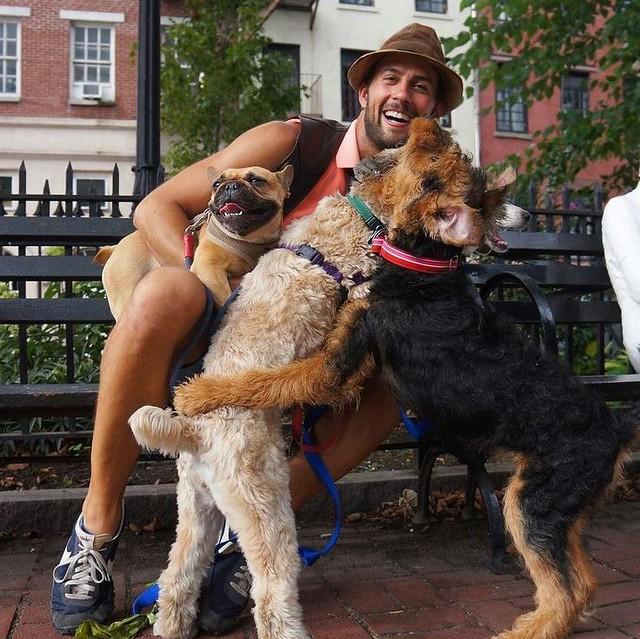 Anjing Kesayangan Lady Gaga Sudah Ditemui, Seorang Wanita Bakal Jadi Jutawan Segera