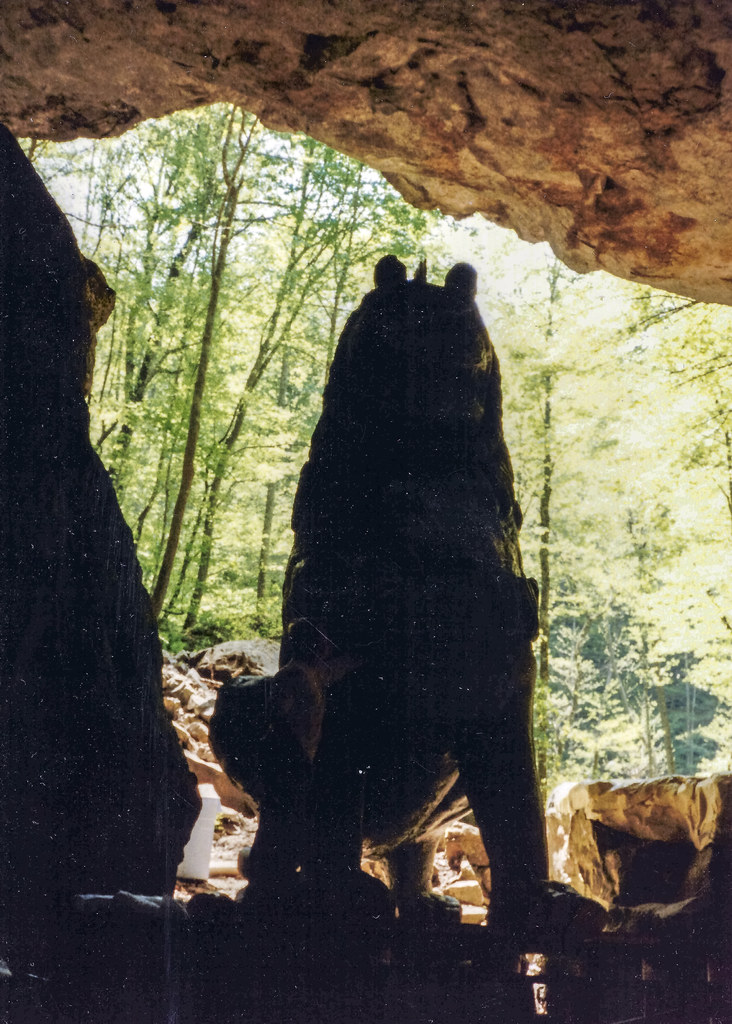Jungle Book Filming, Lost Creek area, White County, Tennessee 2