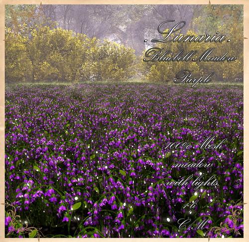 Home & Garden Expo Hunt Gift