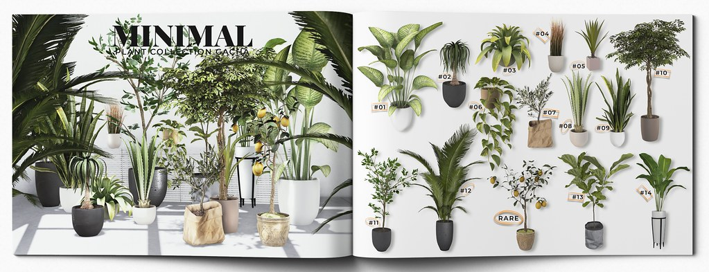 MINIMAL – Plant Collection Gacha