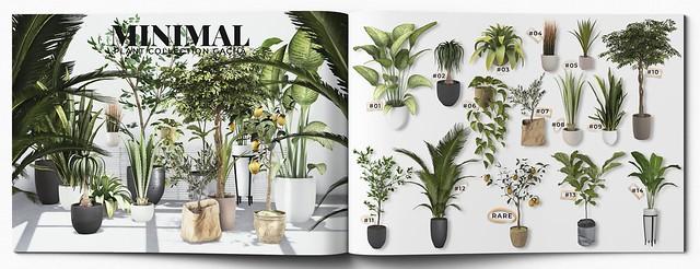 MINIMAL - Plant Collection Gacha