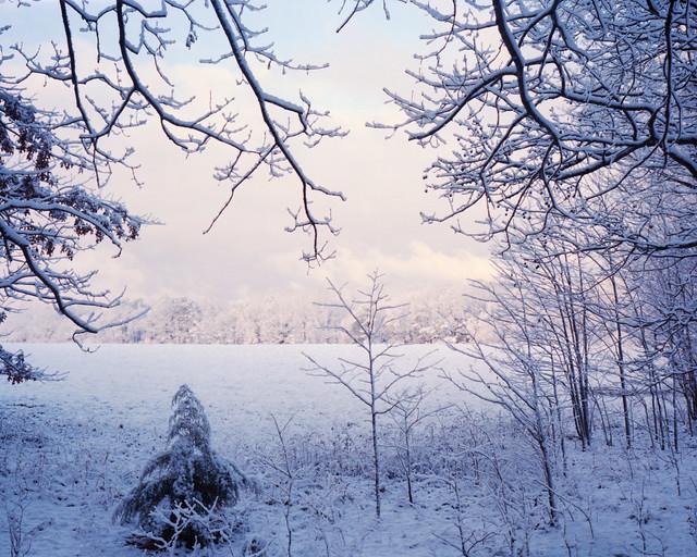 North Carolina Snowy Field