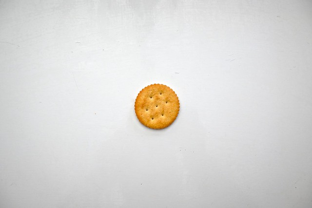 A Ritz Cracker Sitting Smack Dab in the Middle of the Frame