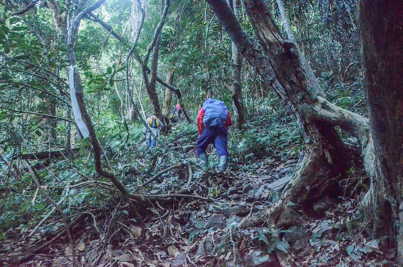 百川山西稜南面山坡高落差陡升段 (2)