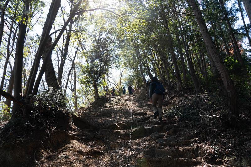 多峯主山の登山道