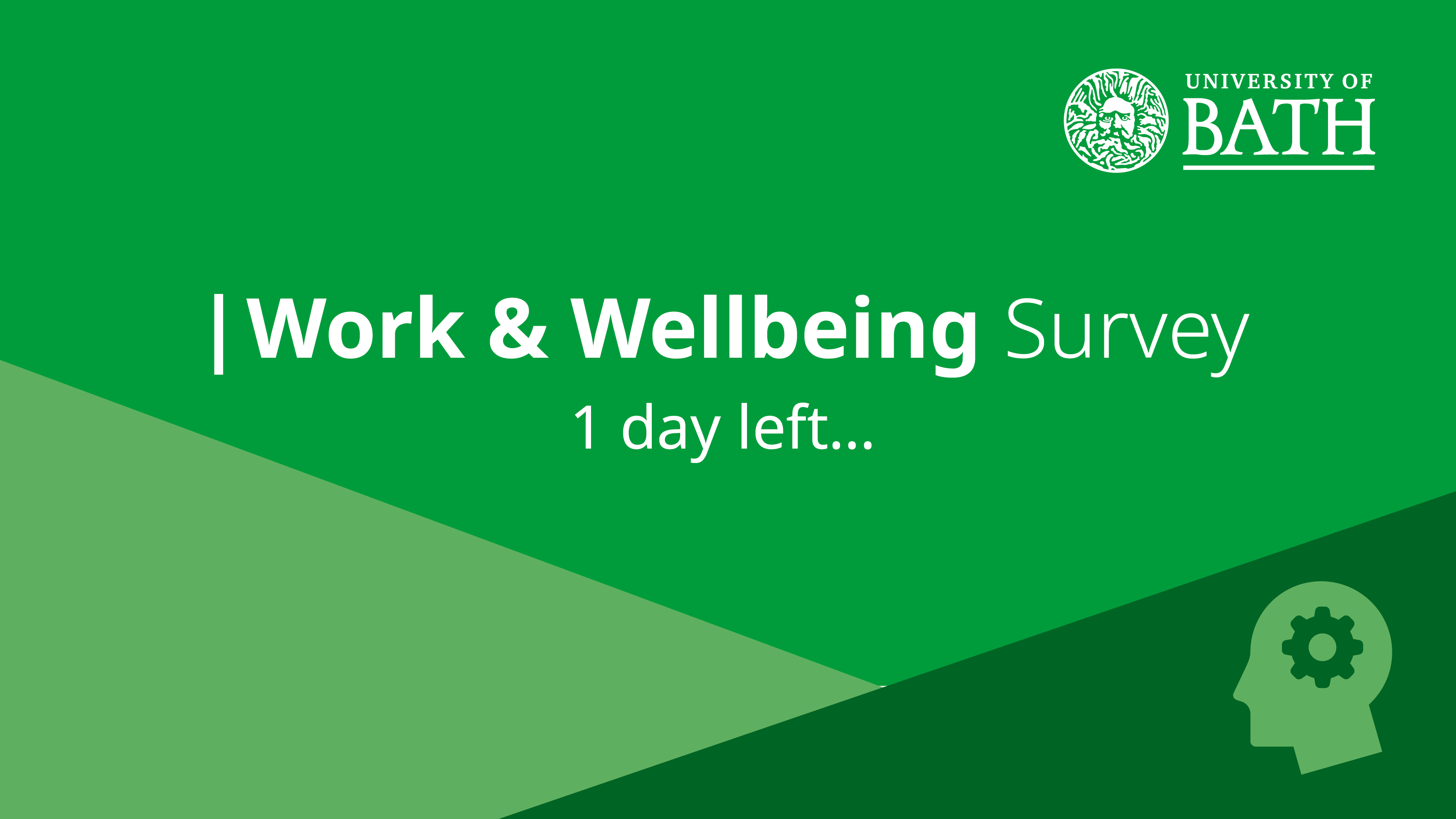 Work and Wellbeing survey