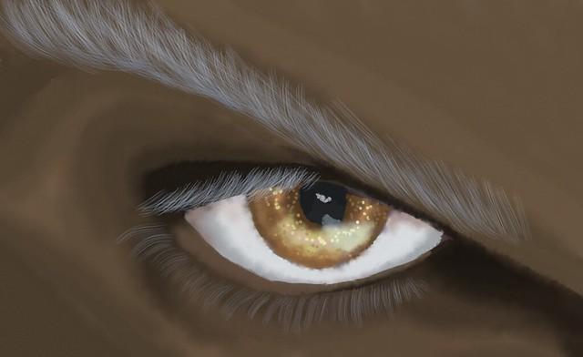 Frost's eye