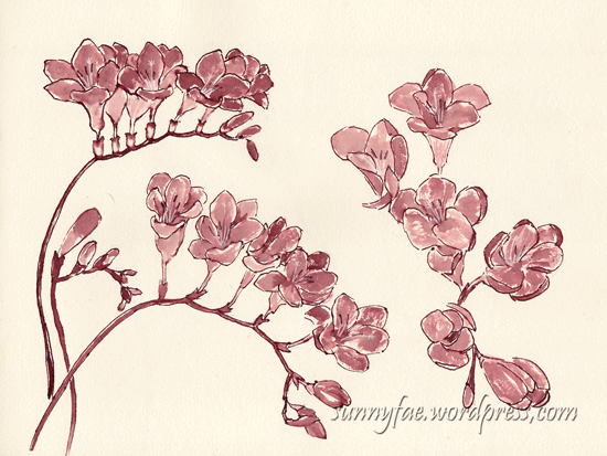 red freesia in red ink
